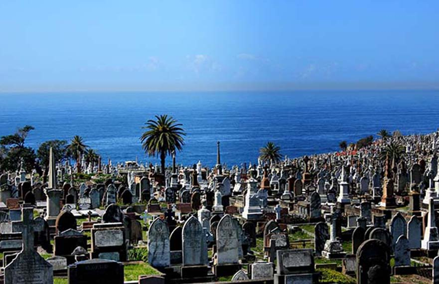 How to Manage Cemetery Easier | Build Your Digital Cemetery | Chronicle